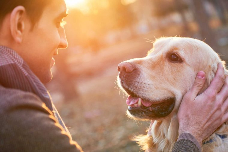 See Eye to Eye to strengthen bond with your Dog