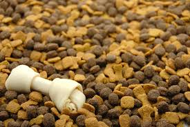 Study Suggests Mercury Not a Risk in Dog Foods